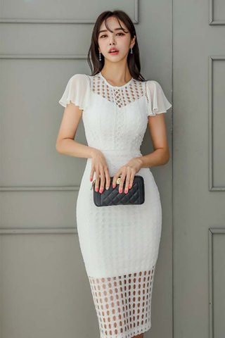 BACKORDER - Katherina Mesh Sleeve Crochet Dress