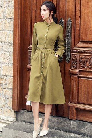 BACKORDER - Chery Pocket Button Dress In Pickle Green