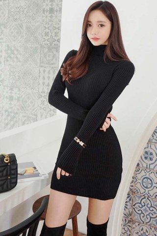 BACKORDER - Camile Knit Sleeve Turtleneck Dress In Black