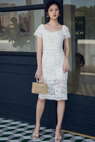 BACKORDER - Solisa Lace Overlay Knee Length Dress