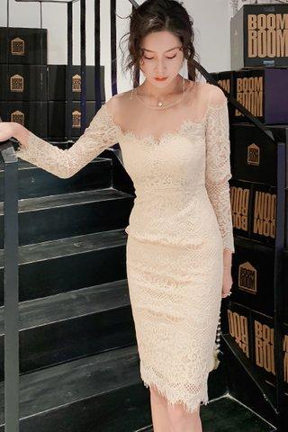BACKORDER - Feldy Mesh Shoulder Lace Dress in Cream