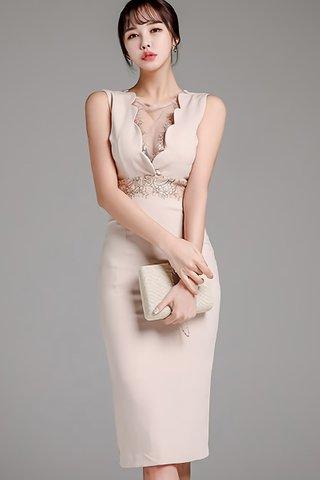 BACKORDER - Vareth Mesh Lace V-Neck Dress