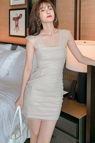 BACKORDER - Eunice Mesh Sleeveless Mini Dress