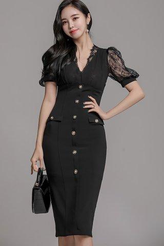 BACKORDER - Sandar Mesh Button Down Dress In Black