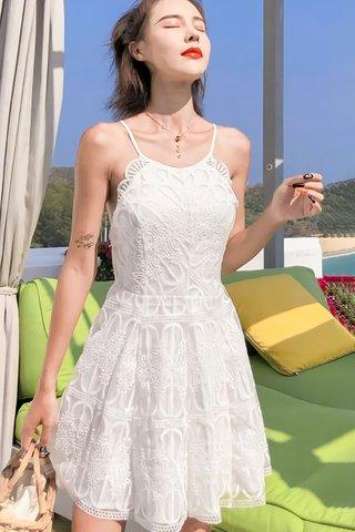 INSTOCK - Kaylin Overlay Lace Mini Dress