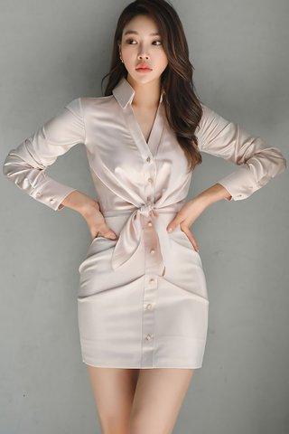 BACKORDER - Kalyn Front Tie Mini Dress